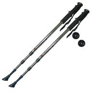 F18434 Палки для скандинавской ходьбы (серебро) до 1,35м Телескопическая, 10014066, Палки для ходьбы